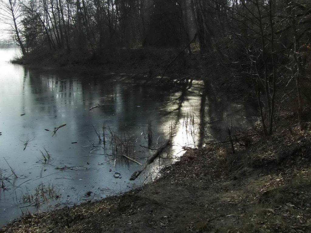 Spiegelungen Blauer See Lehrte