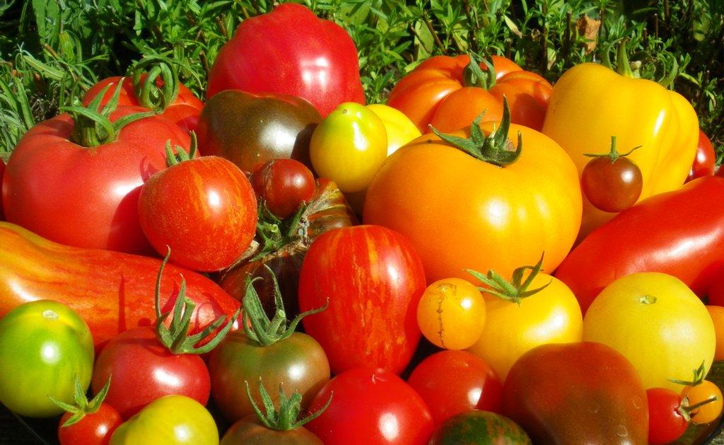 Tomaten Mix