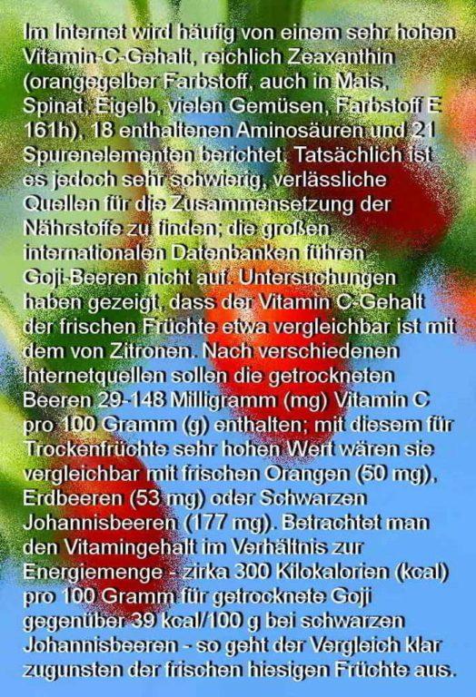 Gojibeere Infotext
