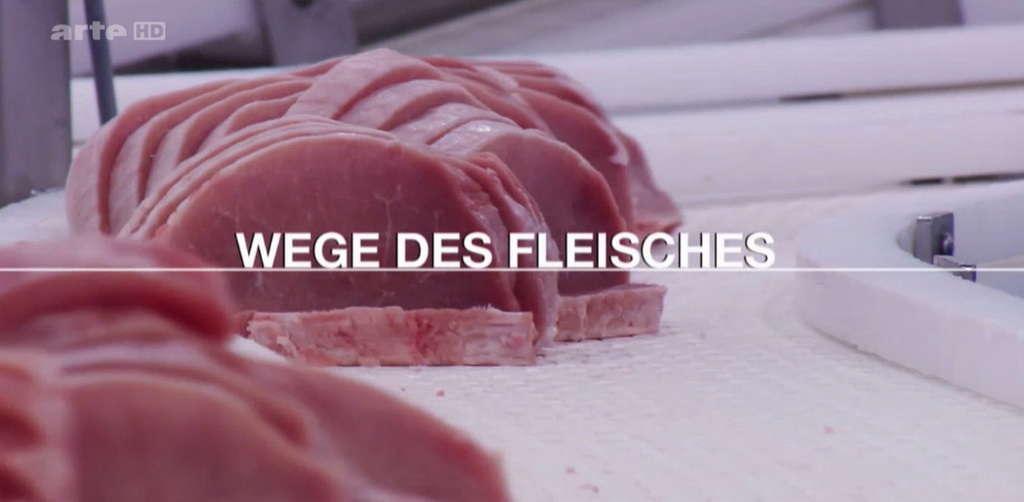 Wege des Fleisches