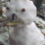 Winter mit Schneemann