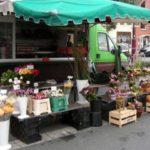Mein Blumenstand Markt Lehrte