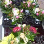 Wochenmarkt Lehrte - Blumen