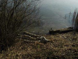Spaziergang am Blauen See Lehrte