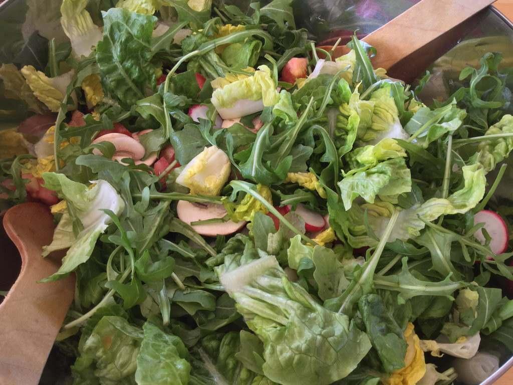 Salat angerichtet - Kochgruppe bei Extremwetter in Hannover-Lehrte