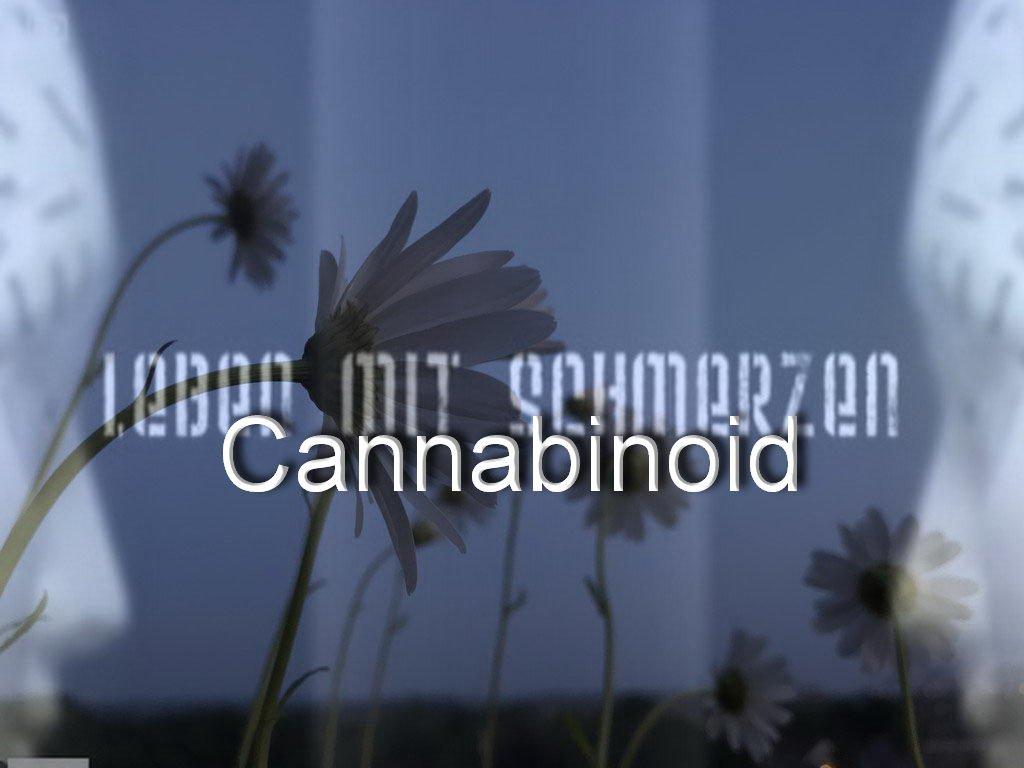 Leben mit Schmerzen-Cannabinoide
