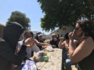 Picknick - Ausflug Steinhuder Meer