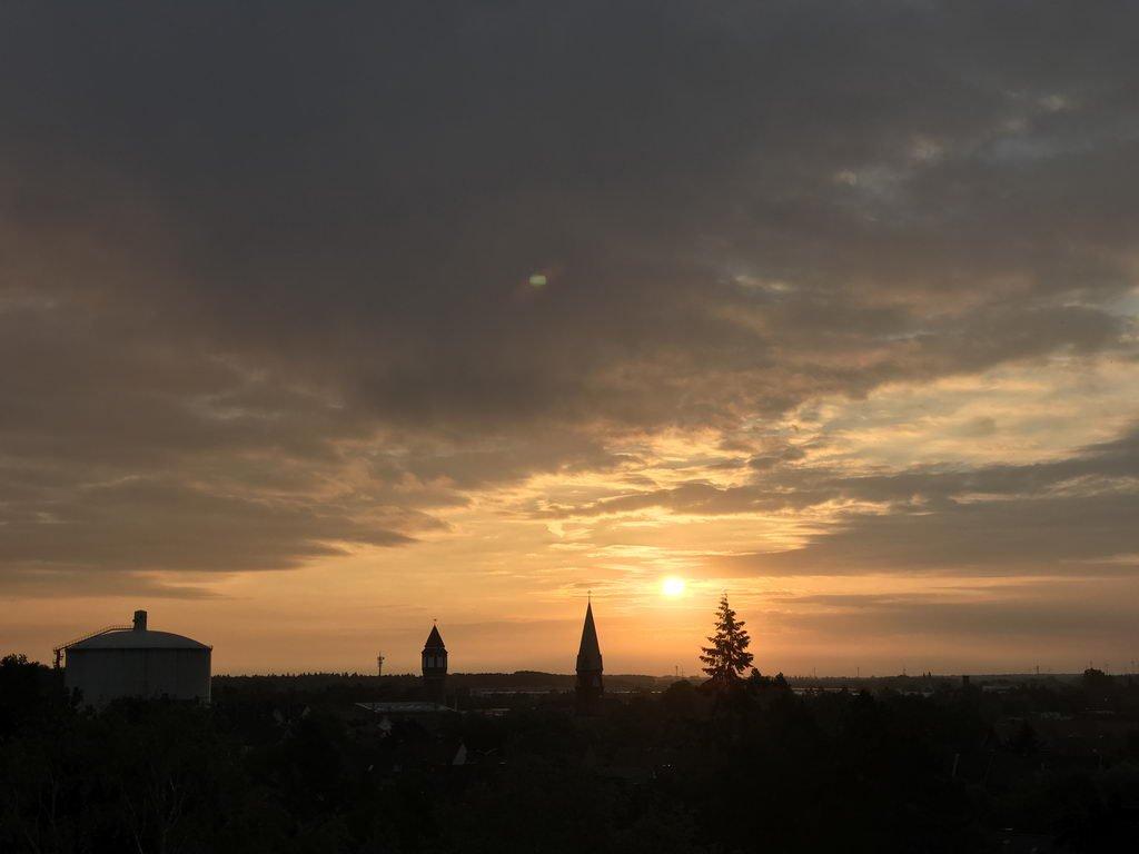 Wisentgehege 2018 mit Lehrte hilft - morgens in Lehrte