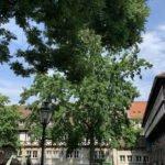 Altstadt Hannover - Ballhof