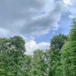 Herrenhäuser Garten - auf dem Weg