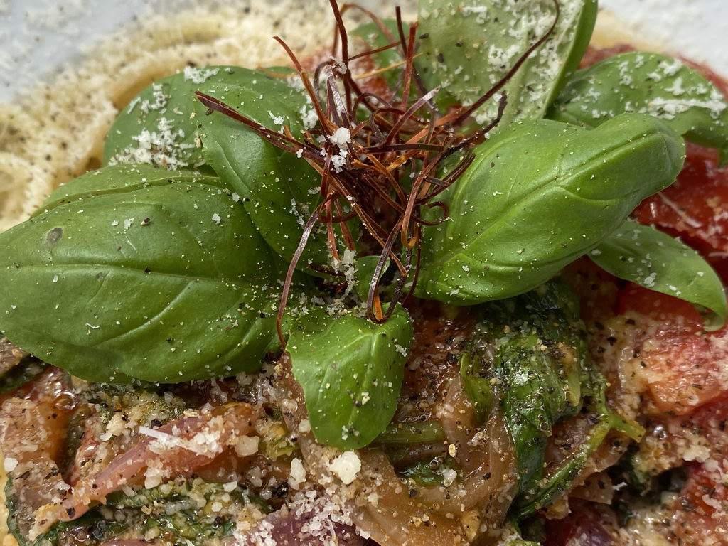 Pasta mit geschmolzenen Tomaten - Basilikum - Kapern - garniert