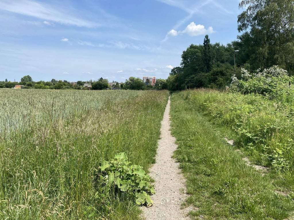Richtung ehemalige Schwanenburg