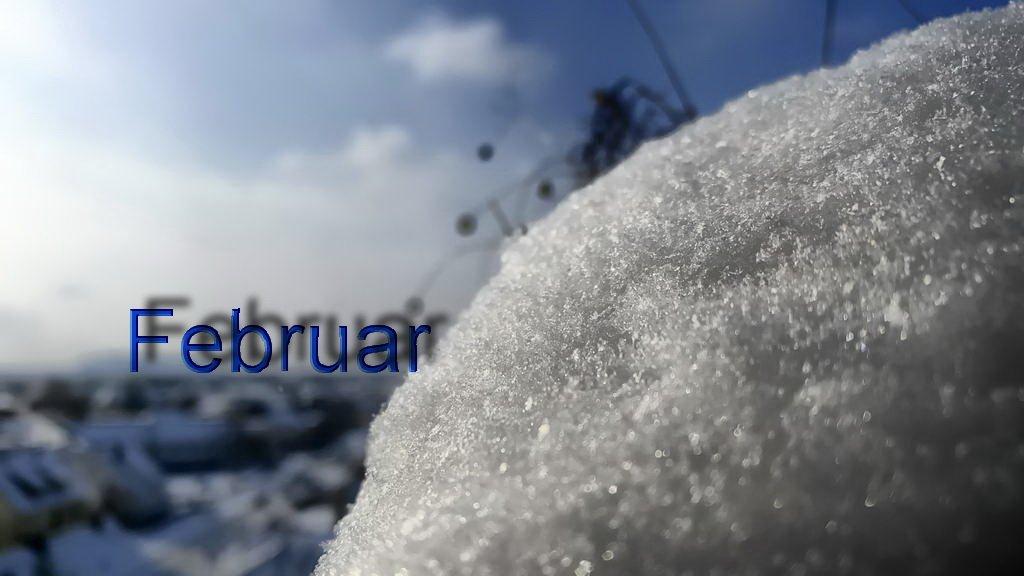 Februar in Bildern