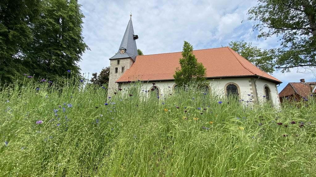 Kirche Ilten mit Blumenmeer