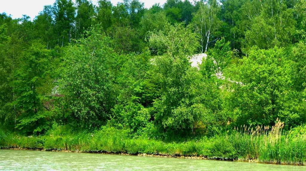 am Mittellandkanal - linke Seite Richtung Anderten