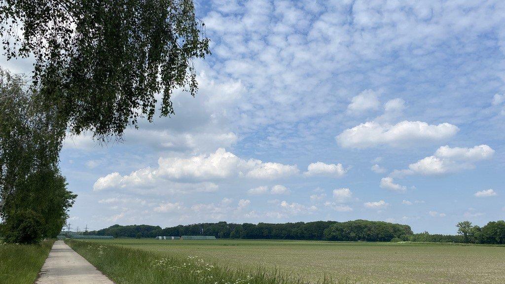 in der Feldmark vor Mittellandkanal