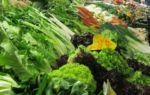 Markthalle Gemüse